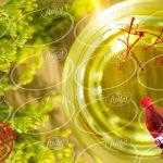 صادرات باکیفیت ترین رنگ زعفران مجاز خوراکی